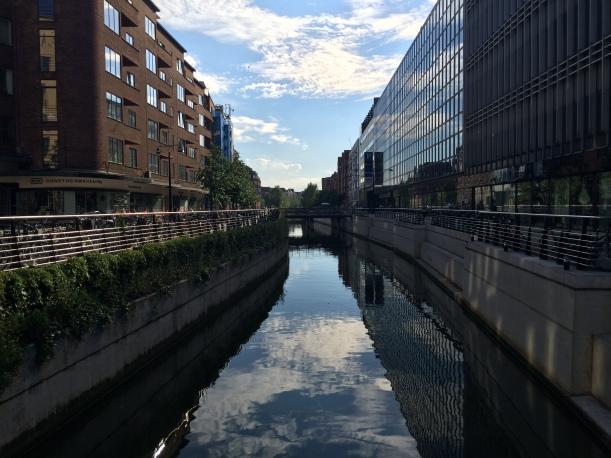 The Aarhus River